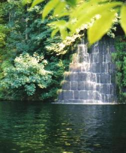 Tenino Quarry Swimming Hole